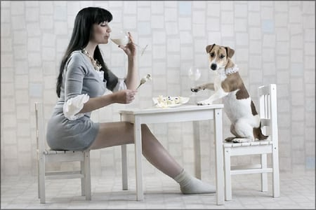 Funny date - pretty, table, funny animals, sexy, photography, girl, dine, funny, chair, animals, dog