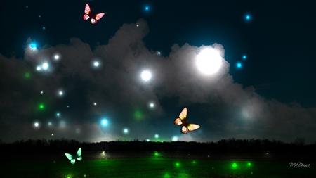 Night Lights - horizon, clouds, sky, lights, butterflies, trees, glow, bright