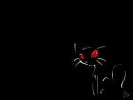 kitty in Dark