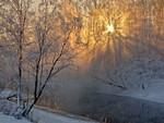 Sunshine through frosty trees..