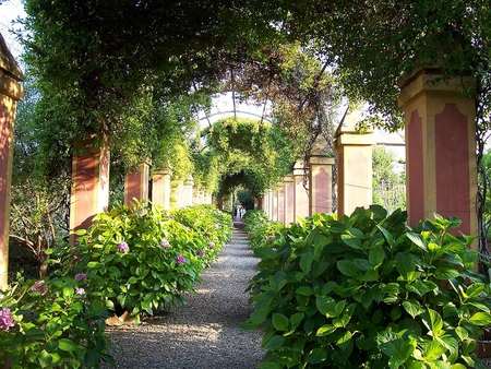 garden path - garden, villa, houses, path, nature