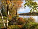 Winnipeg Wickerwork-Autumn