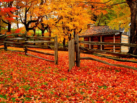 A Farm In Autumn Forests Amp Nature Background Wallpapers