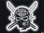 harley-Davidson skull