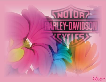 Harley-Davidson fleurs logo rose - fleurs, motorcycle, logo rose, rose, harley davidson, flower