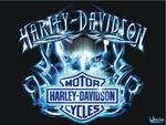 harley-Davidson tribal bleu