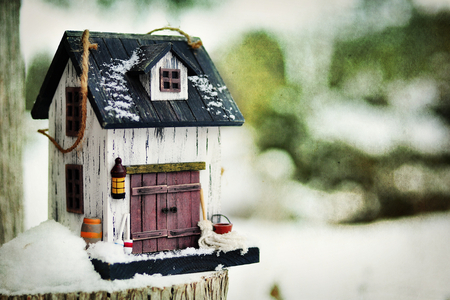 Birdhouse - cute, birdhouse, little, winter