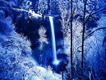 WINTER FOREST FALLS