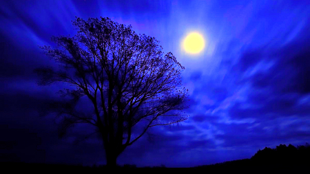 Night Of Moon Sky Amp Nature Background Wallpapers On