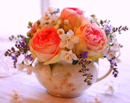 cup of roses flowers nature background wallpapers on desktop