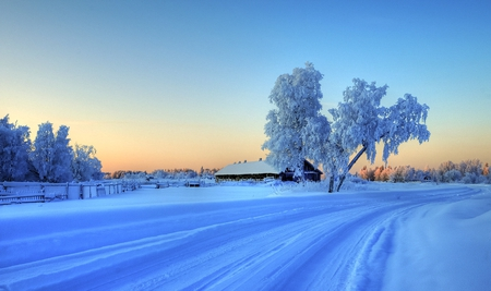 White Blanket Winter - cold, snow, frost, winter, tracks, rural, beautiful, country