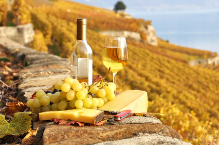 French lunch - wine, grapes, delicious, white, lunch, cheese, tasty