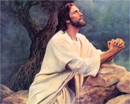 Jesus Is Praying Jesus Christ The Lord Wallpapers And