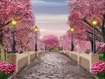 Glory of spring