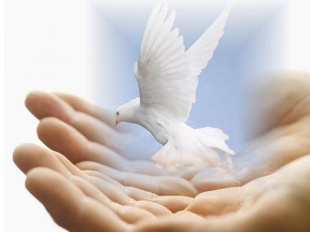 peace dove - dove, sky, jesus, animal, bird, clouds, peace, hands