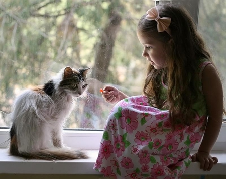 Cute girl with cat - cat, baby, girl, cute