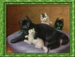 """Irish Mom with her three kittens"""