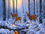 Deers in winter forest