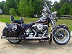 1998 Harley-Davidson FLSTS Heritage Springer 95th Anniversary Edition