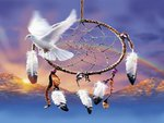 Peace dove dreamcatcher