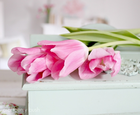 Pink grace♥ - new life, spring time, lovely, beautiful, soft pink, floral bouquet, love, forever, precious, flowers, nature, tulips, white, light
