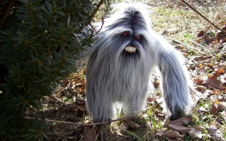 Yeti isn't as scary as I thought:) - cute, nature, funny, abstract
