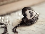 ♥Butterfly Heart Locket♥