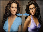 Alyssa Milano Model 6