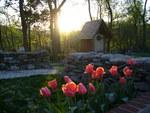 A Virginia Garden