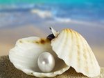 I Found this Pearl in the Sea for You