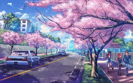 Sakura Road - sakura, grass, clear, cherry trees, sky, students, leaves, anime, car, road, pink, kids, blue