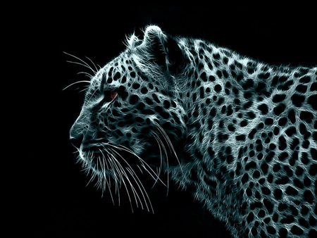 Lightning Leopard - leopard, eye, different, black, unique, cat, animal, spotted, spot, lightning, whiskers, steath, white, ear