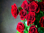 Roses For You: Susan, Marianne, Alexandra