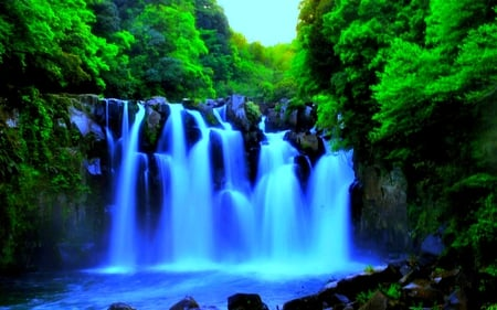 GREEN FOREST FALLS - forest, nature, green, falls