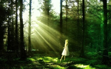 Alice in wonderland - forest, sun, fairy tale, grass, alice in wonderlad, blonde, magic, trees, believe, girl, green, beauty, sunshine, miracle, ray