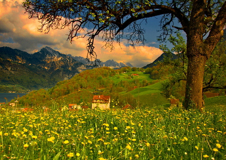 Mountain houses - sun, cottage, beautiful, clouds, floral, mountain, green, village, peaks, flowers, river, blue, hills, calmness, mountainscape, houses, high, roofs, spring, sky, tree, water, slope, peaceful, summer, nature, branches, meadow